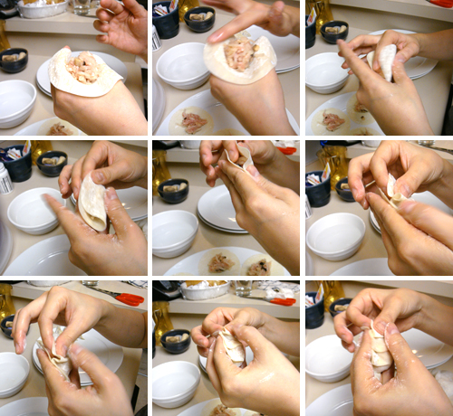How to Wrap Gyoza
